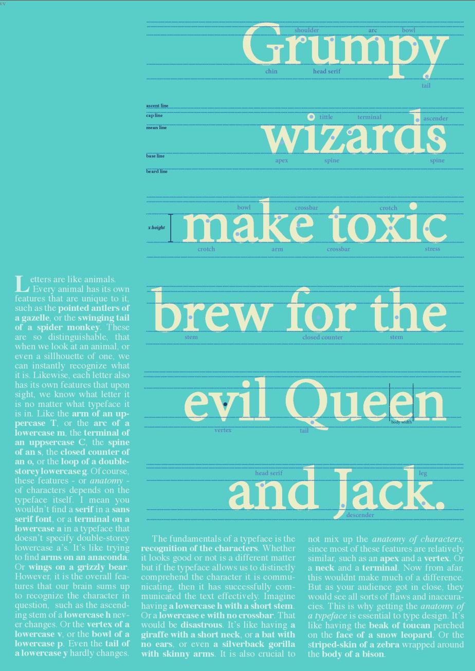 Anatomy Of Typography Poster Hamza Javaid